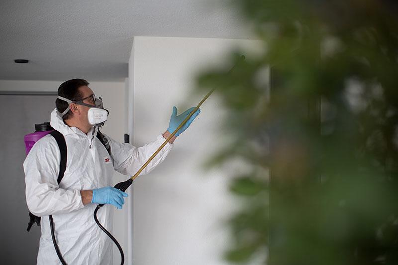 Dienstleistungen Schädlingsbekämpfung Stöcklin Home Service